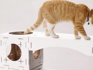Un arbre à chat DIY en carton